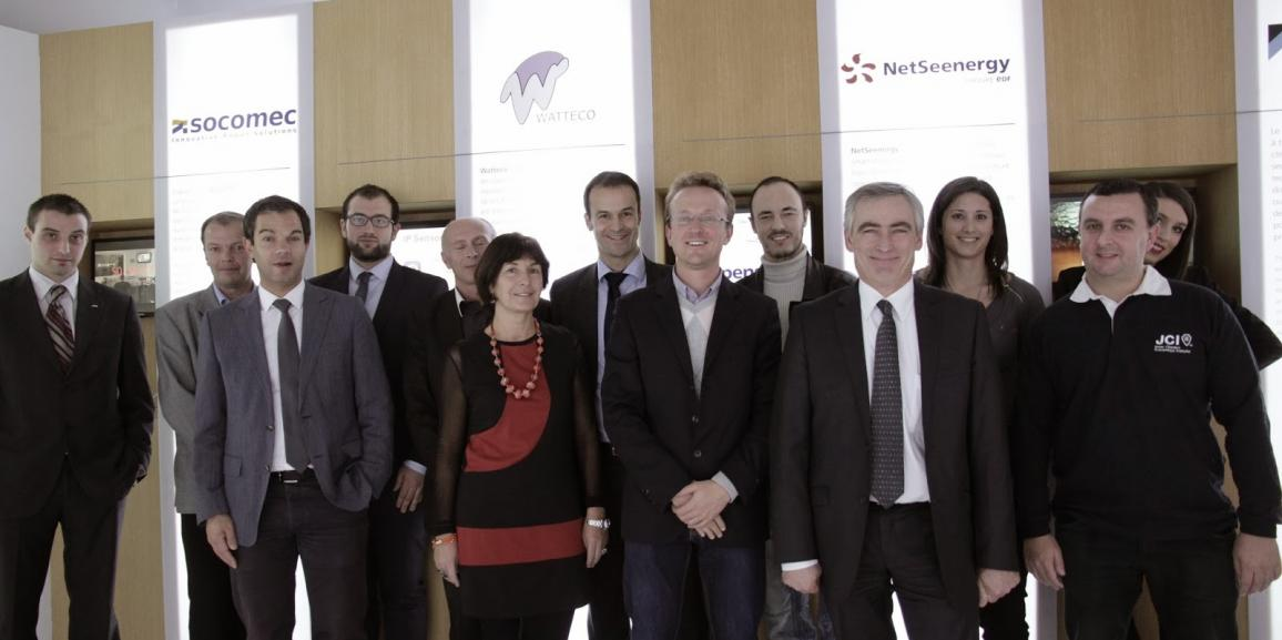 Smart people in smart grids